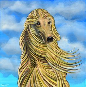 Fabio's Dog